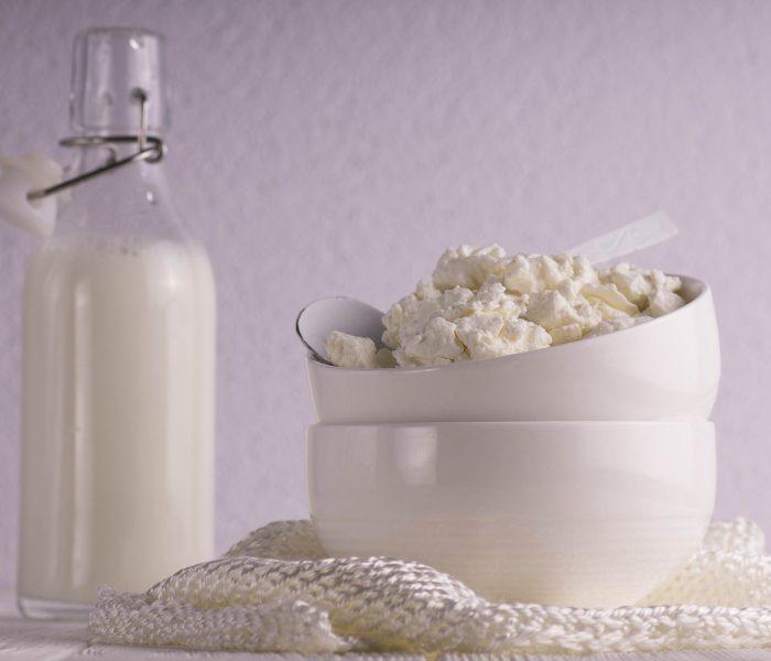 Produits laitiers : Quel rôle leur donner dans ton alimentation ?