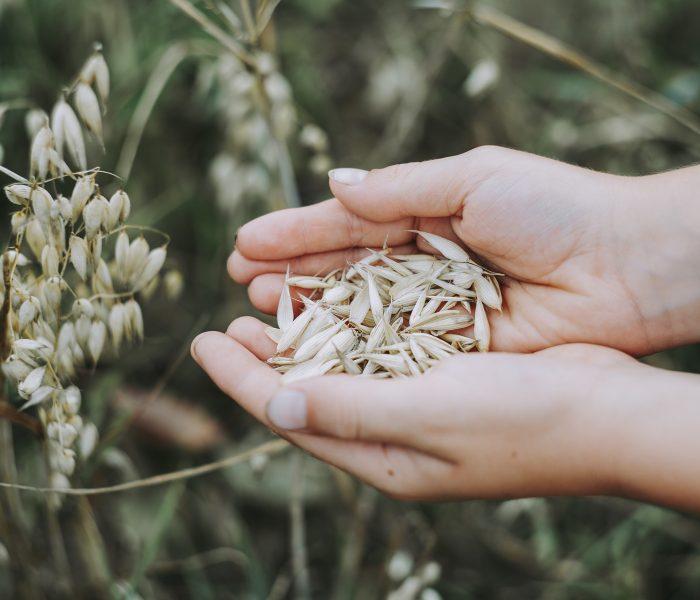 Método Kousmine: ¿Cómo fortaceler tu capital-salud a través de la alimentación?