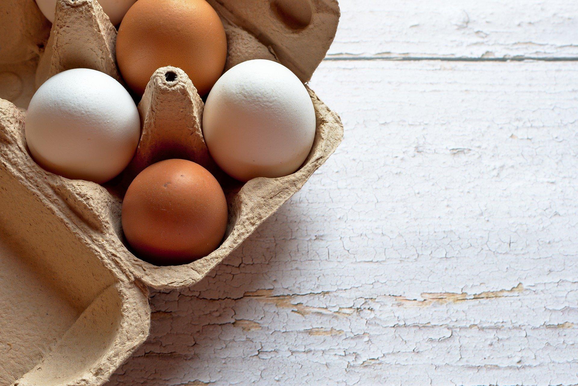 Alimentación: todo sobre los Huevos